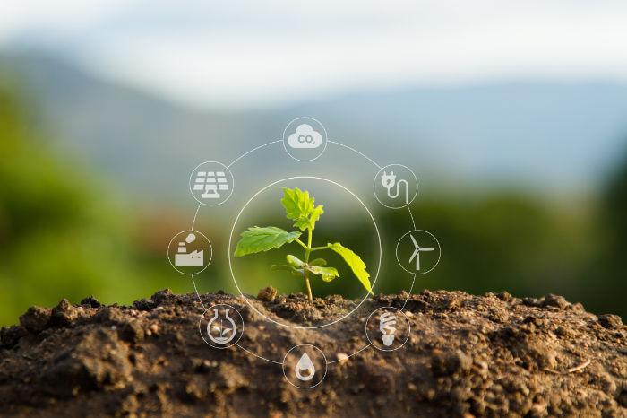 Memostar Duurzaam - Rene Verkaart